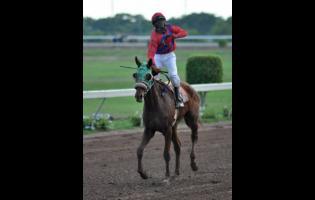 Jockey Dennis Brown aboard BLESSTINE.