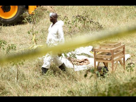 An investigator at the scene of a shallow grave in Rivoli, St Catherine, yesterday. The police believe that the site is used by members of the Clansman gang to bury their victims.